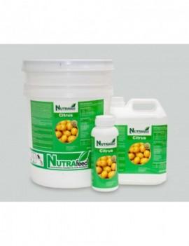 NF Citrus