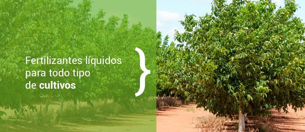 Fertilizantes líquidos para todo tipo de cultivos.